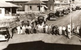 Motoristas da Colonizadora MARIPÁ - 1950